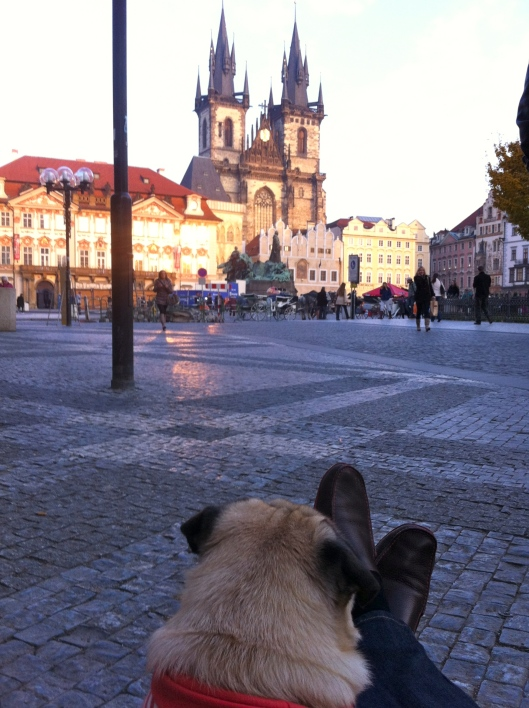 Prague Old Town Square & Church of Our Lady Before Tyn