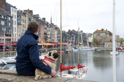 Taking In The Bay At Honfleur