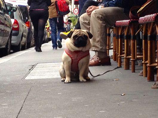 At The English Pub In Paris